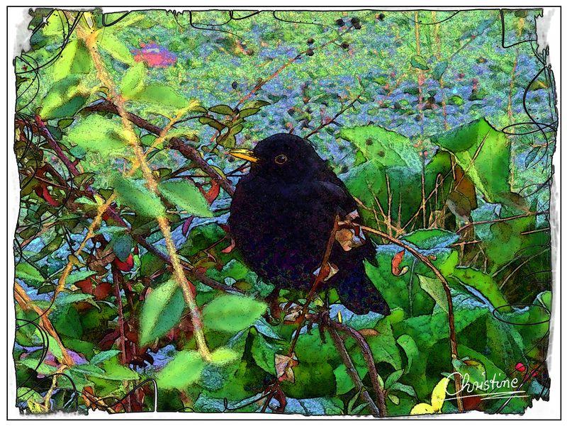 Autumn Bird Collage